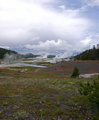 geyer field 3 (foxtail_1) Tags: yellowstonenationalpark geyser geyserfield
