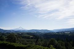 (garrettmurray) Tags: travel summer mountains oregon portland view cascades mthood pnw camera:model=sonyrx1