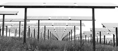 Epic Solar Field - 2014 - B&W (tesal22) Tags: bw outside epic sept2014meeting