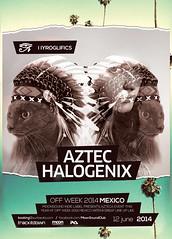 Aztec Summer Vol 2 (DusskDesign) Tags: summer music cats house girl festival cat vintage palms poster concert flyer model aztec indian chief retro egyptian indie fest psd template suara hyroglifics summerflyer