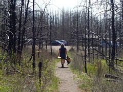 Walking back to parking lot from Isabella Lake portage trail