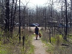 Walking back to parking lot from Isabella Lake portage trail