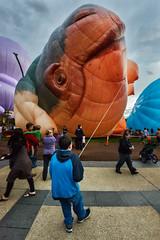 Canberra Balloon Spectacular 2014 (scatrd) Tags: australia canberra hotairballoons act parkes 2014 australiancapitalterritory balloonspectacular afsnikkor24120mmf4gedvr canberraballoonspectacular jasonbruth