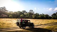 Mitsubishi Jeep J44 (Aadil Chouji Schiffer) Tags: life park wild tree green nature beautiful landscape view jeep wildlife nation safari sri lanka scenary elephants srilanka suv mitsubishi habarana minneriya j44