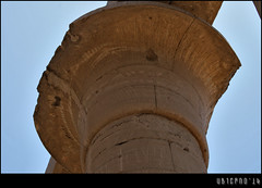 Papyrus capital in the colonnade (Ubierno) Tags: summer ro river holidays egypt nile cairo verano egipto luxor vacaciones thebes egypte  caire nilo ramesseum elcairo amenhotepiii opet  amn tebas tuthmosisiii amnra ubierno ramssii amenofisiii gebelelsilsila shabako ipetresyt nectaneboi