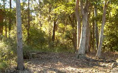 Lot 167, 102 Amaroo Drive, Smiths Lake NSW