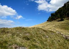 a Szekatura csúcs lábánál / at the foot of the the Secătura mountaintop (debreczeniemoke) Tags: autumn cloud forest transylvania transilvania felhő erdély ősz erdő szekatura 1430m canonpowershotsx20is gutinhegység secătura munţiigutin