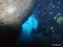 diving maiorca (antocalv) Tags: mare underwater diving fisch santaponca maiorca maiorcaspagnaunderwaterpescisub