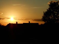 2014-08-26 18.51.04 (Nibbler1977) Tags: sunset sky orange tree field grass silhouette clouds evening sundown dusk silhouettes sunsets fields orangesky setting treeline