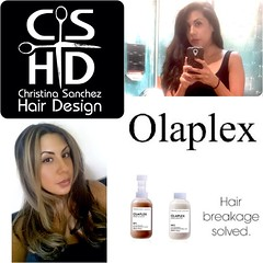 "Olaplex http://www.christinasanchezhairdesign.com • <a style=""font-size:0.8em;"" href=""http://www.flickr.com/photos/69107011@N07/15035631285/"" target=""_blank"">View on Flickr</a>"