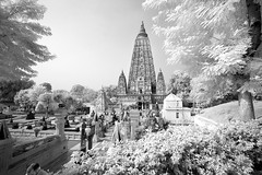 India_0172