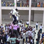 Teachers breaking  dahihandi