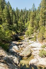 Sequoia National Park (DanGarv) Tags: california nationalpark sequoia sequoianationalpark d800