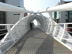 Footbridge at Princes Dock (bryanilona) Tags: liverpool footbridge explore pedestrianbridge princesdock