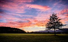 Last Summer Sunset (Michael Kline) Tags: sunset september va salem 2014 greenhillpark