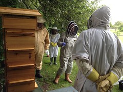 Seeing our customers warre beehives in action