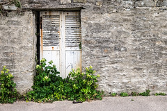 Door (Ruth Flickr) Tags: batz brittany enezvaz finistère france roscoff spring coast door overgrown plants sea stone îledebatz