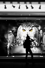 we watch you (Wackelaugen) Tags: silhouette street people person spotlight owl shopwindow sc selectivecoloring canon eos photo photography wackelaugen googlies stuttgart germany europe königstrasse