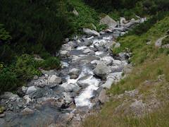 Transfagarasan River (Mihai Toma) Tags: water fall transfagarasan