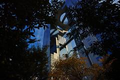 20161118_DP0Q6677 (NAMARA EXPRESS) Tags: street urban city building structure tower evening autumn fine outdoor color foveonclassicblue umeda osaka japan foveon sigma dp0 quattro wide ultrawide superwide namaraexp