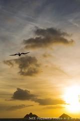 Alala Point Sunrise (j . f o o j) Tags: namokulua mokuiki alalapoint lanikaisunrise lanikai kailua hawaii nikond610 nikkor50mmf12ais aloha