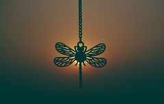 BACKLIT MM EXPLORED (Ayeshadows) Tags: macromonday backlit dragonfly sillhoute chain necklace sun evening