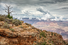 Restless Canyon (Kirk Lougheed) Tags: arizona desertview grandcanyon grandcanyonnationalpark southrim usa unitedstates landscape nationalpark outdoor rim summer cloud