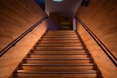 'Ascend' (Andrew.Rough_) Tags: stairs maggie centre center ascend descend up down aberdeen architecture interior oak wood birch cedar brown lights decor nikon d3300 light lighting modern homely quiet tranquil calm hospital