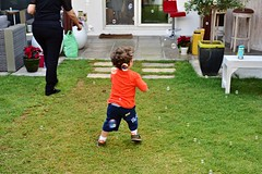 Lawn Full Length Son Males  Child Childhood Grass Baby Playing Cheerful Excitement People Happiness Outdoors Human Body Part Day Adult (LeFoox1318) Tags: lawn fulllength son males child childhood grass baby playing cheerful excitement people happiness outdoors humanbodypart day adult