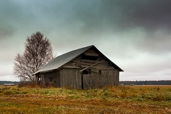 Frost On The Fields And Barns (k009034) Tags: 500px wooden copy space finland matkaniva oulainen abandoned agriculture architecture autumn barn birch building clouds countryside farming fields forest frost loneliness nature no people old rural sky trees teamcanon