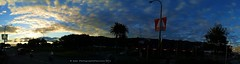 162. CITY SUNSET PANORAMA: Cloud-Peppered Sky (www.YouTube.com/PhotographyPassions) Tags: sky cloudy sunset sunny dusk twilight silhouettes trees blue bright street city cityscape cityskyline mlpphlandscape landscape streetscape streetview suburb town streetlamps lamps panorama outdoor wellingtonnz