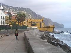 Funchal, Madeira , NGIDn1232932622 (naturgucker.de) Tags: ngidn1232932622 naturguckerde funchal cwolfgangkatz