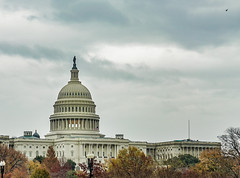 2016.11.30 DC People and Places with a Sony A7sII 09030 (tedeytan) Tags: capitoldome dc sonya7sii washington uscapitol exif:model=ilce7sm2 exif:aperture=50 camera:make=sony exif:isospeed=100 exif:lens=fe2470mmf4zaoss exif:make=sony camera:model=ilce7sm2 exif:focallength=70mm