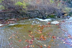Buttermilk Creek (pecooper98362) Tags: ithaca newyork buttermilkfallsstatepark buttermilkcreek waterfall littlefalls autumn lateafternoon viewfromabove
