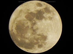 SUPERMOON (ariel gitana) Tags: supermoon fullmoon lunar luna superzoom supermoonphilippines manilaphilippines taguigcity arielgitana teampinas teampinoy teampilipinas philippinelandscape pinoylandscapephotographer perigeesyzygyoftheearth–moon–sunsystem newmoon astronomy astronomical crustaltides totallunareclipse november142016 ellipticalorbitaroundtheearth perigeanspringtides
