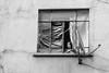 Broken, Mexico City (Geraint Rowland Photography) Tags: broken window poverty brokenglass satellite livinginpoverty mexicocity distritofederal blackandwhite streetphotography travelphotography modernlife liveismexicocity