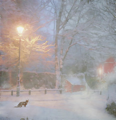 December evening (BirgittaSjostedt- away for a while.) Tags: winter scene lamp evening outdoor fox animal fence house snow ice tree sweden birgittasjostedt magicunicornverybest ie