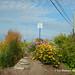 Saint-Félicien - DSCN0911