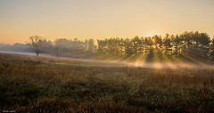 Valley Forge Morning (b88harris) Tags: valley forge philadelphia pennsylvania revoluntionary war fog morning sunrise light nikon d7200 sigma 1750mm park