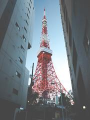 Tokyo Tower - Shiba-koen - Minato - Japan (Stephane Rossignol) Tags: tokyotower shibakoen minato japan japon  tokyo