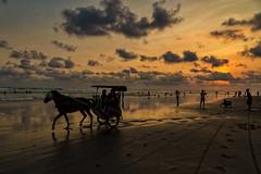 Parangtritis sunset (jebob) Tags: indonesia java sunset horse leisure clouds sky sun beach sand silhouette asia jebob people shadows