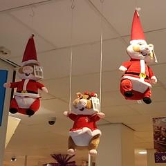 Kersthamsters (zaqina) Tags: hamsters kersthamsters brugstraat groningen ah albert heijn
