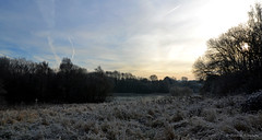 Winter Morning (R_S_2014) Tags: nikond3100 nikon landscape lanarkshire winter2016 winter nature cold trees sky frost southlanarkshire