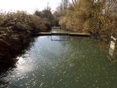 manejo del agua (corbetapalentino) Tags: laguna de la nava