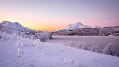 Cold winter. (Reidar Trekkvold) Tags: cold fujifilmxt10 harstad landscape natur nature nordnorge norway storvannsyd troms vinter winter xf1855ois snow snø