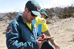 The Hawkweed Field Team (Environment + Heritage NSW) Tags: officeofenvironmentandheritage orangehawkweed orangehawkweedcontrolprogram weed weedcontrol weedprogram eradication survey huntinghawkweed hawkweed mouseear volunteers volunteerprogram volunteer