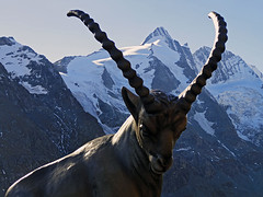Grossglockner (Vid Pogacnik) Tags: austria grossglockner grossglocknergroup outdoor panorama landscape goat statue glacier mountainpeak