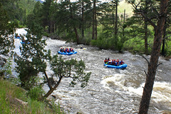 Poudre Canyon (City of Fort Collins, CO) Tags: trees wild white nature water birds animals forest river kayak canyon rafting wilderness poudre