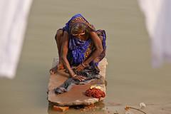 Dhobi Wallah (Dick Verton ( more than 13.000.000 visitors )) Tags: travel woman india water river asia varanasi washing ganges dhobiwallah dickverton