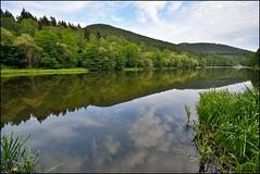 Reflet des Vosges du Nord (Excalibur67) Tags: trees forest landscape nikon sigma reflet arbres alsace paysage reflexion fort etang eaux d7100 vosgesdunord ex1020f456dchsm